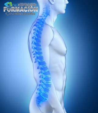 Curso higiene postural reconpyme.es