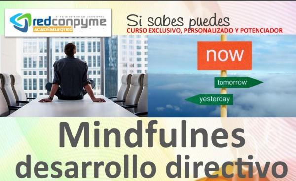 Curso Mindfullnes de desarrollo directivo