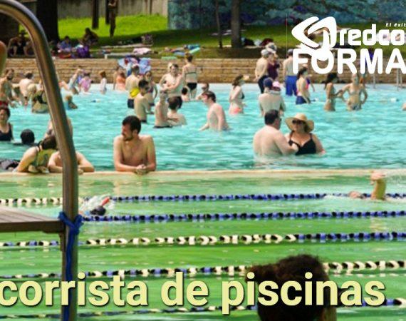 socorrista de piscina palma Mallorca Baleares